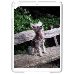 Chinese Crested Dog Sitting 2 Apple iPad Pro 9.7   Hardshell Case