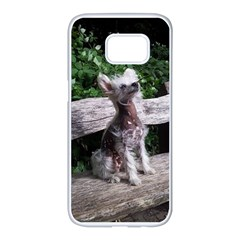 Chinese Crested Dog Sitting 2 Samsung Galaxy S7 edge White Seamless Case