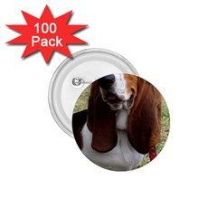 Basset Hound Sitting  1.75  Buttons (100 pack)