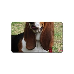 Basset Hound Sitting  Magnet (Name Card)
