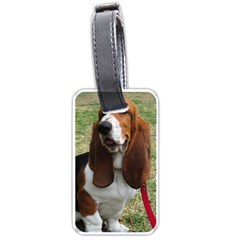 Basset Hound Sitting  Luggage Tags (Two Sides)