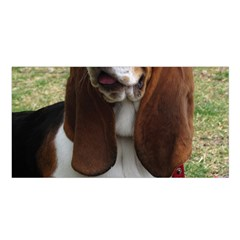 Basset Hound Sitting  Satin Shawl
