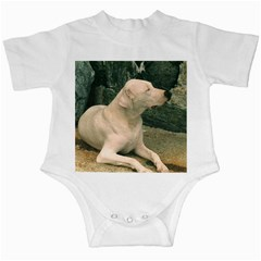 Dogo Argentino Laying  Infant Creepers