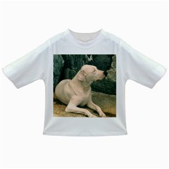 Dogo Argentino Laying  Infant/Toddler T-Shirts