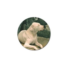 Dogo Argentino Laying  Golf Ball Marker (10 pack)