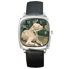 Dogo Argentino Laying  Square Metal Watch
