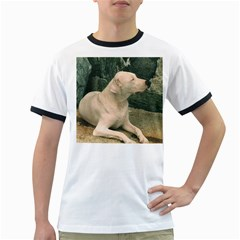 Dogo Argentino Laying  Ringer T-Shirts