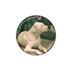 Dogo Argentino Laying  Hat Clip Ball Marker