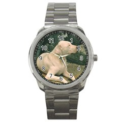Dogo Argentino Laying  Sport Metal Watch