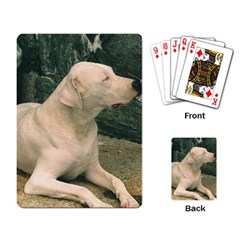 Dogo Argentino Laying  Playing Card