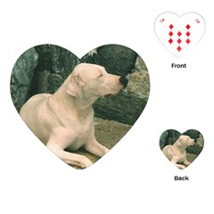 Dogo Argentino Laying  Playing Cards (Heart)
