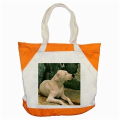 Dogo Argentino Laying  Accent Tote Bag