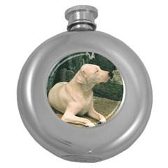Dogo Argentino Laying  Round Hip Flask (5 oz)