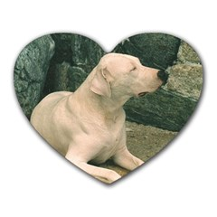 Dogo Argentino Laying  Heart Mousepads