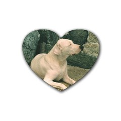 Dogo Argentino Laying  Heart Coaster (4 pack)