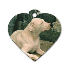 Dogo Argentino Laying  Dog Tag Heart (Two Sides)