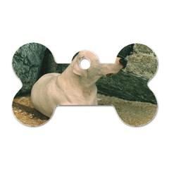 Dogo Argentino Laying  Dog Tag Bone (One Side)