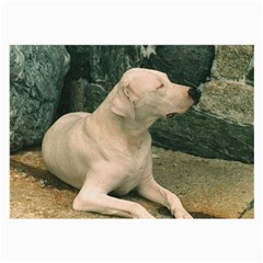 Dogo Argentino Laying  Large Glasses Cloth (2-Side)