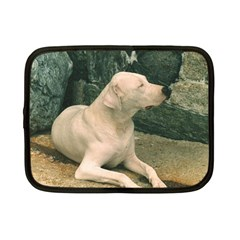 Dogo Argentino Laying  Netbook Case (Small)