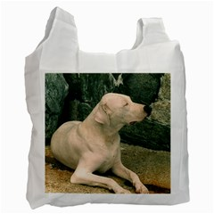 Dogo Argentino Laying  Recycle Bag (One Side)