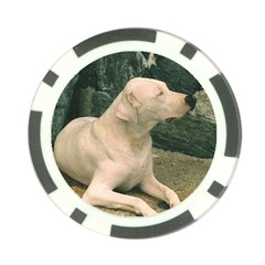 Dogo Argentino Laying  Poker Chip Card Guards (10 pack)