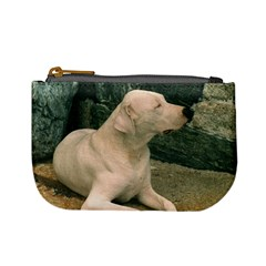 Dogo Argentino Laying  Mini Coin Purses
