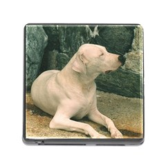 Dogo Argentino Laying  Memory Card Reader (Square)