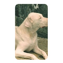 Dogo Argentino Laying  Memory Card Reader