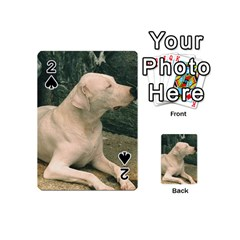 Dogo Argentino Laying  Playing Cards 54 (Mini)