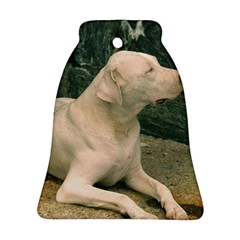 Dogo Argentino Laying  Bell Ornament (2 Sides)