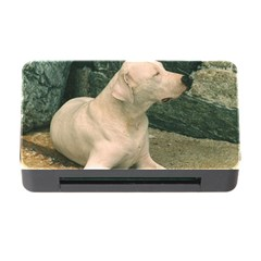 Dogo Argentino Laying  Memory Card Reader with CF