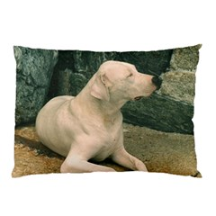 Dogo Argentino Laying  Pillow Case (Two Sides)