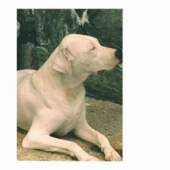 Dogo Argentino Laying  Small Garden Flag (Two Sides)