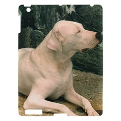 Dogo Argentino Laying  Apple iPad 3/4 Hardshell Case