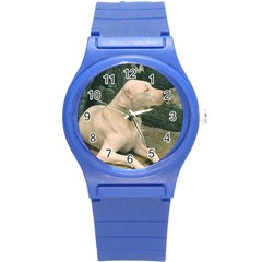 Dogo Argentino Laying  Round Plastic Sport Watch (S)