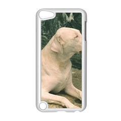 Dogo Argentino Laying  Apple iPod Touch 5 Case (White)