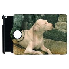 Dogo Argentino Laying  Apple iPad 3/4 Flip 360 Case