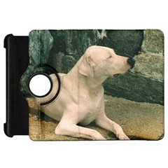 Dogo Argentino Laying  Kindle Fire HD 7