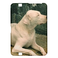Dogo Argentino Laying  Kindle Fire HD 8.9