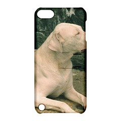 Dogo Argentino Laying  Apple iPod Touch 5 Hardshell Case with Stand