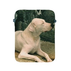 Dogo Argentino Laying  Apple iPad 2/3/4 Protective Soft Cases