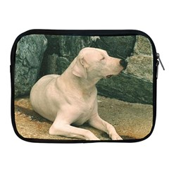 Dogo Argentino Laying  Apple iPad 2/3/4 Zipper Cases
