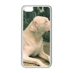 Dogo Argentino Laying  Apple iPhone 5C Seamless Case (White)