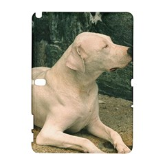 Dogo Argentino Laying  Galaxy Note 1