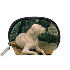 Dogo Argentino Laying  Accessory Pouches (Small)
