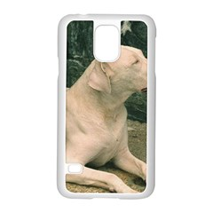 Dogo Argentino Laying  Samsung Galaxy S5 Case (White)