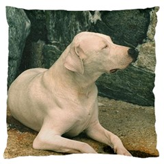 Dogo Argentino Laying  Large Flano Cushion Case (One Side)