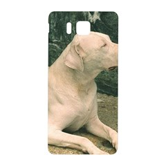 Dogo Argentino Laying  Samsung Galaxy Alpha Hardshell Back Case