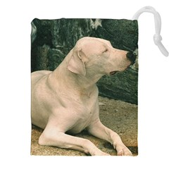 Dogo Argentino Laying  Drawstring Pouches (XXL)