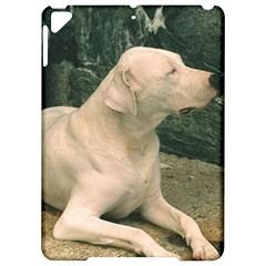Dogo Argentino Laying  Apple iPad Pro 9.7   Hardshell Case